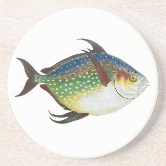 Vintage Tropical Opah Fish, Marine Aquatic Animal Beverage Coaster