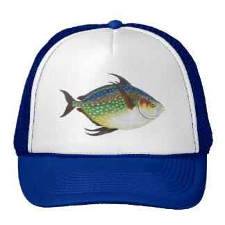 Vintage Tropical Opah Fish, Marine Aquatic Animal Trucker Hat