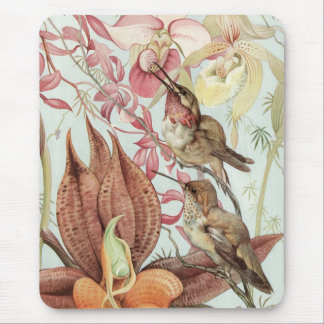 Vintage Tropical Orchids, Flowers and Hummingbirds Mouse Pad