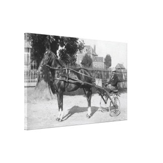 Vintage trotter and sulky canvas print