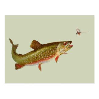 Vintage trout postcard