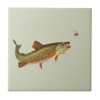 Vintage trout small square tile