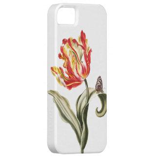 Vintage Tulip Butterfly Garden Springtime iPhone SE/5/5s Case