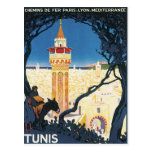 Vintage Tunis Africa Post Card