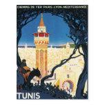 Vintage Tunis Africa Postcard