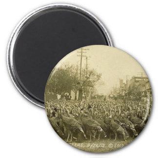 Vintage Turkey Farm Photograph Magnet