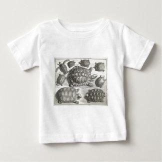 Vintage Turtle Etching Baby T-Shirt
