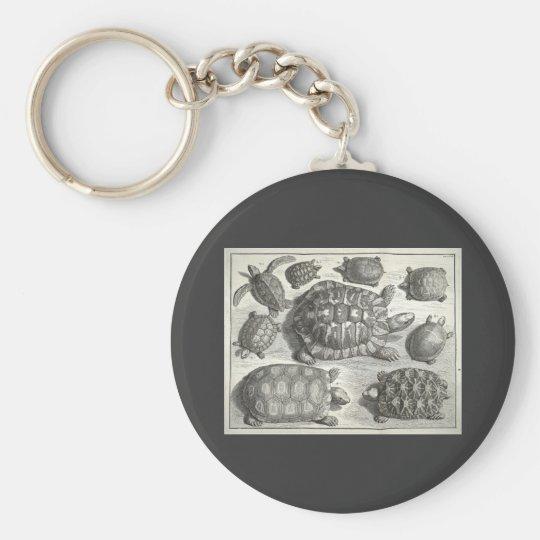 Vintage Turtle Etching Keychain