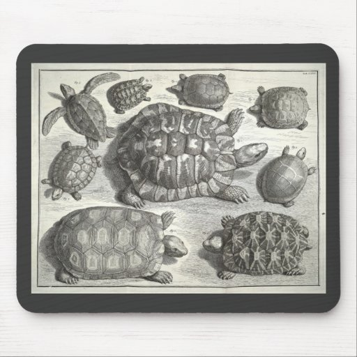 Vintage Turtle Etching Mouse Pad