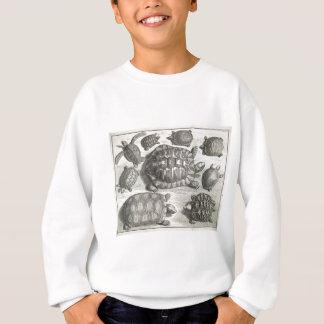 Vintage Turtle Etching Sweatshirt