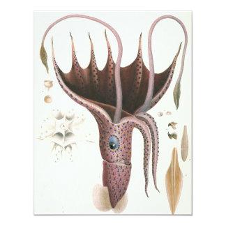 Vintage Umbrella Squid, Marine Life Animals 4.25x5.5 Paper Invitation Card