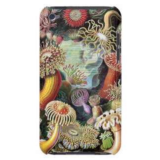 Vintage Underwater Coral & Sealife painting iPod Touch Case