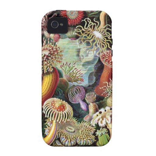 Vintage Underwater Coral & Sealife painting Vibe iPhone 4 Case