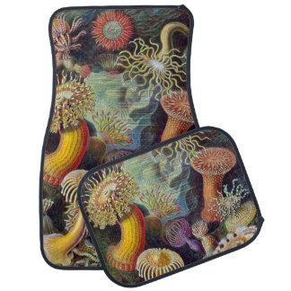 Vintage Underwater Sea Anemones by Ernst Haeckel Car Floor Mat
