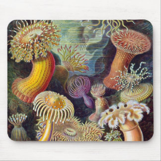 Vintage Underwater Sea Anemones by Ernst Haeckel Mouse Pad