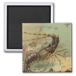 Vintage Underwater Sea Life, Animals in the Ocean Magnet