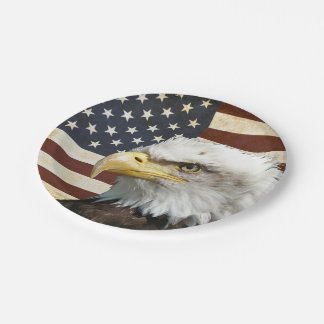 Vintage US USA Flag with American Eagle Paper Plate