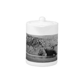 Vintage USA Alaska Mendenhall glacier Juneau 1970 Teapot