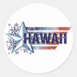 Vintage USA Flag with Star – Hawaii Round Sticker
