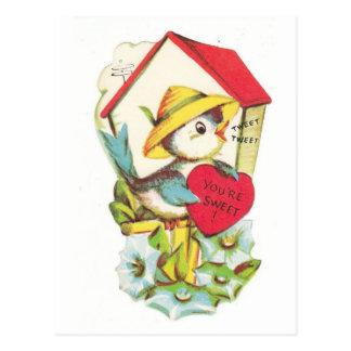 Vintage Valentine Bird House Postcard