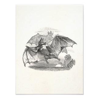 Vintage Vampire Bats Personalized Retro Bats Photo Print