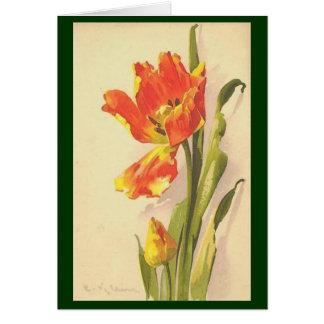 Vintage - Variegated Tulip Card