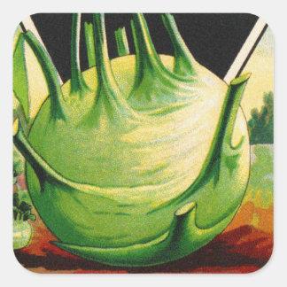 Vintage Vegetable Kohl Rabi Seed Package Stickers