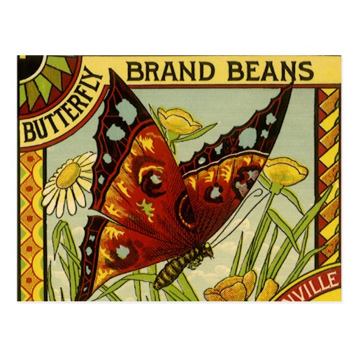 Vintage Vegetable Label Art, Butterfly Brand Beans Postcard
