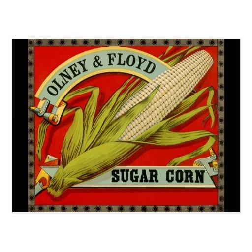 Vintage Vegetable Label, Olney & Floyd Sugar Corn Postcard