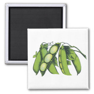 Vintage Vegetables; Lima Beans, Organic Farm Foods Magnet