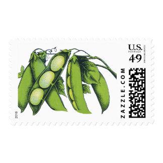 Vintage Vegetables; Lima Beans, Organic Farm Foods Postage