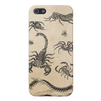 Vintage Vermin Scorpion Spider Flea Pink iPhone 5 Cover