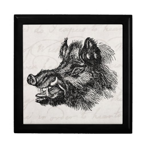 Vintage Vicious Wild Boar w Tusks Template Gift Box