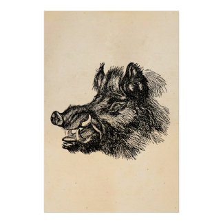 Vintage Vicious Wild Boar w Tusks Template Poster