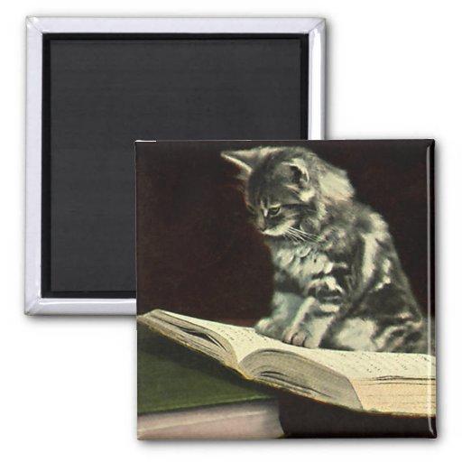 Vintage Victorian Animals, Cat Kitten Reading Book Fridge Magnet
