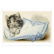 Vintage Victorian Cat Kitten Postcard