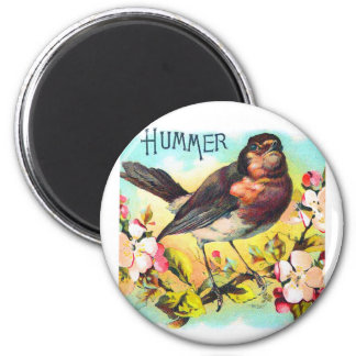 Vintage Victorian Hummer Bird Illustration Magnet