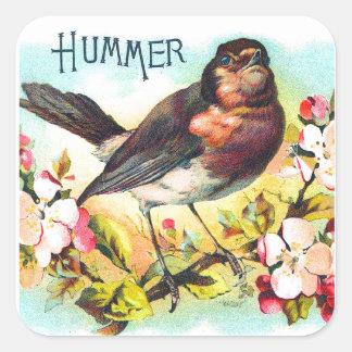 Vintage Victorian Hummer Bird Illustration Square Sticker