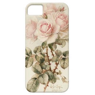 Vintage Victorian Romantic Roses iPhone SE/5/5s Case