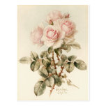 Vintage Victorian Romantic Roses Post Cards