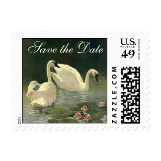 Vintage Victorian Swans, Birds Save the Date! Stamp