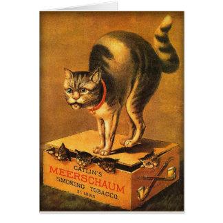 Vintage Victorian Trade Card Catlin Meerschaum Cat