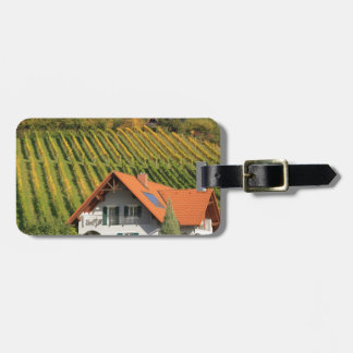 Vintage village luggage tags