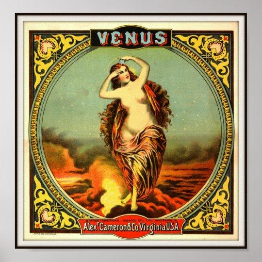 Vintage Virginia Venus  Advertising 1884 Poster