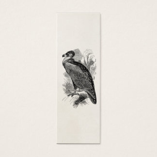 Vintage Vulture Bird Personalized Vultures Birds Mini Business Card