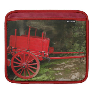 Vintage wagon sleeve for iPads