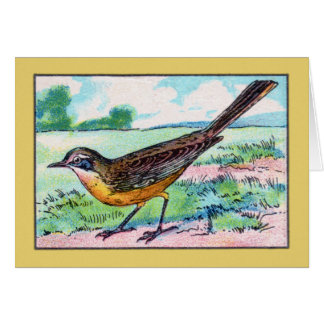 Vintage Wagtail Bird Print Card