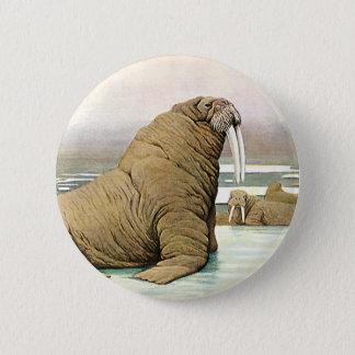 Vintage Walrus on Iceberg in Arctic, Wild Animals Button