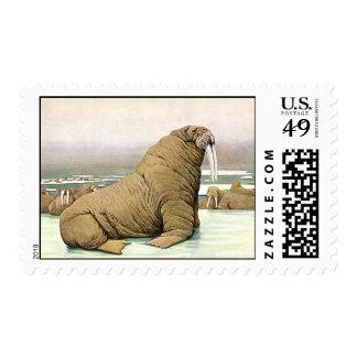 Vintage Walrus on Iceberg in Arctic, Wild Animals Postage Stamp