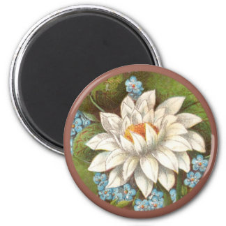 Vintage Waterlilly Magnet